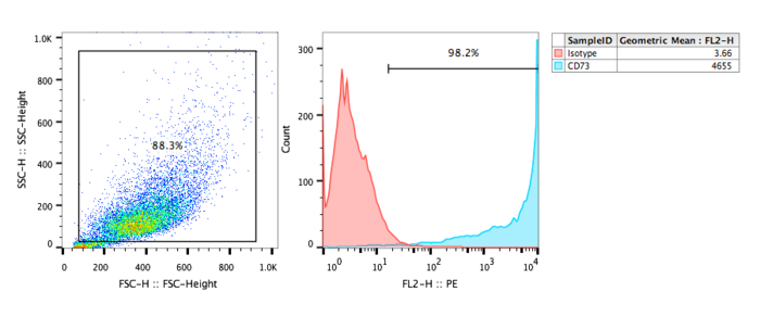 FACs analysis of human CD73 recombinant cell line