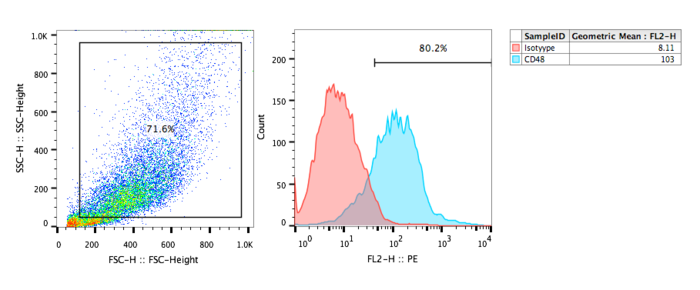 FACs analysis of human CD48 recombinant cell line