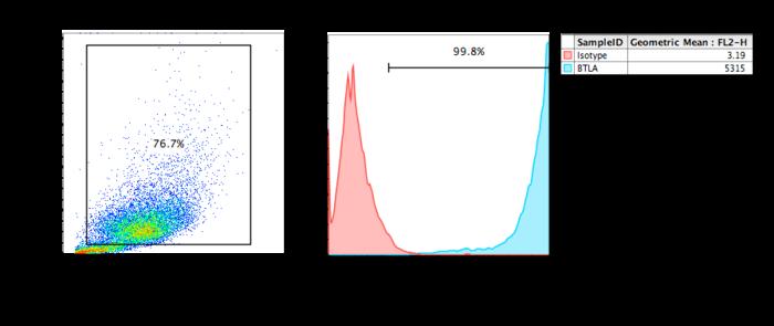 FACs analysis of BTLA recombinant human cell line