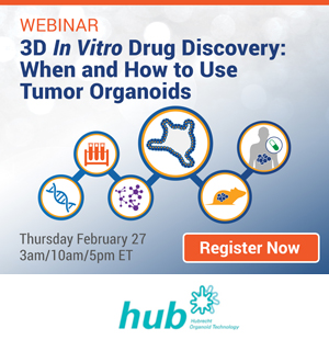 3D In Vitro Drug Discovery: When and How to Use Tumor Organoids