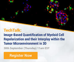 Image-Based Quantification of Myeloid Cell Repolarization and their Interplay within the Tumor Microenvironment in 3D