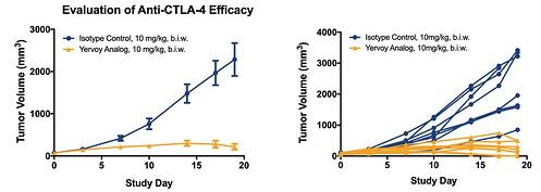 Performance of a Yervoy analog in a CTLA-4 knock-in mouse model