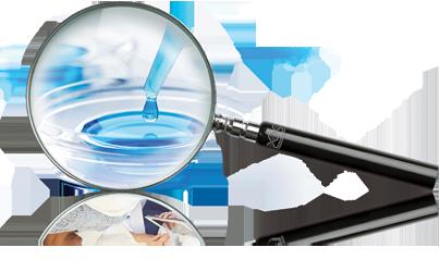 exvivo-magnifyglass.png