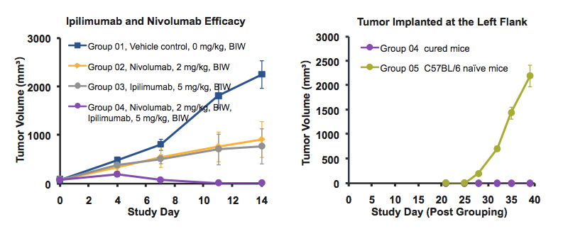 Performance of Ipilimumab and Nivolumab in a PD-1/CTLA-4 knock-in mouse model