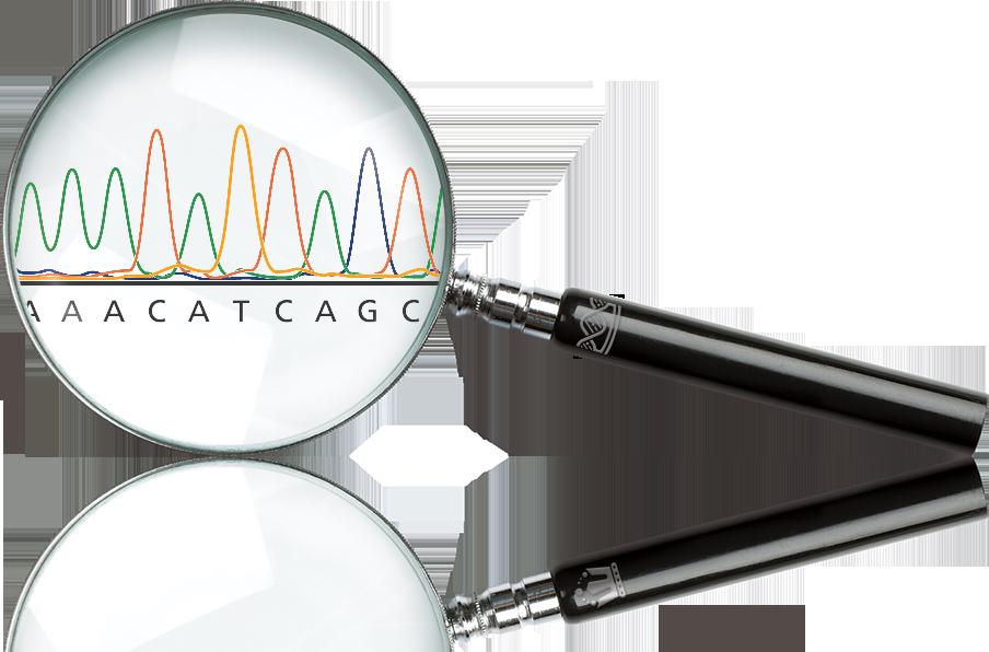 genomice-magnify-glass
