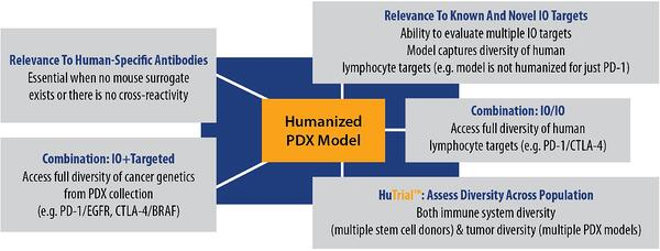 Advantages of Hematopoietic Stem Cell - PDX