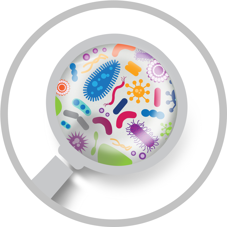 joseph maxwell microbiome webinar