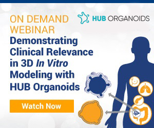 Demonstrating Clinical Relevance in 3D In Vitro Modeling with HUB Organoids