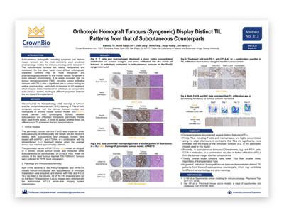 Poster 313: Orthotopic Homograft Tumours Display Distinct TIL Patterns