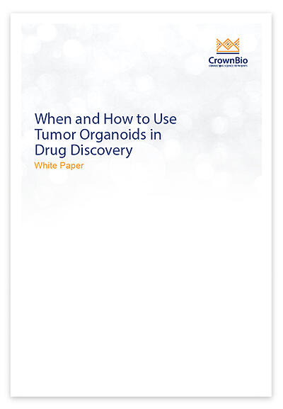 New White Paper: When and How to Use Tumor Organoids in Drug Discovery
