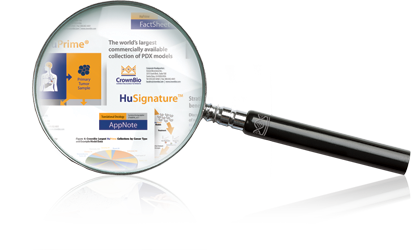 publications-magnifyglass.png