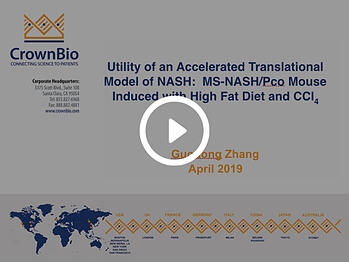 NASH Summit 2019 – MS-NASH Model Presentation