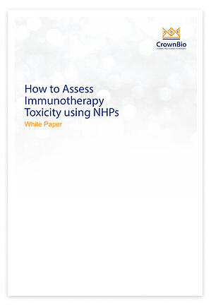White Paper: Identifying Immune-Related Toxicity with Non-GLP Exploratory NHP Toxicology Studies