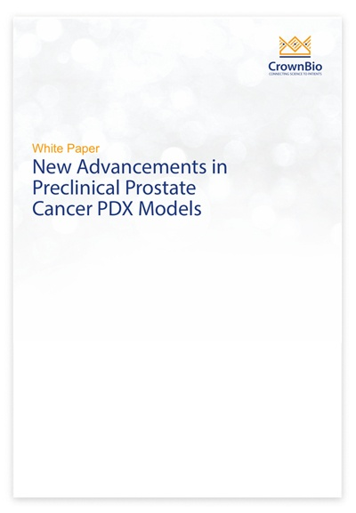 New Advancements in Preclinical Prostate Cancer PDX Models
