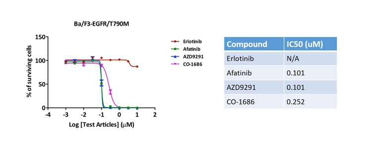 EGFR T790M Recombinant Cell Line Characterization Data