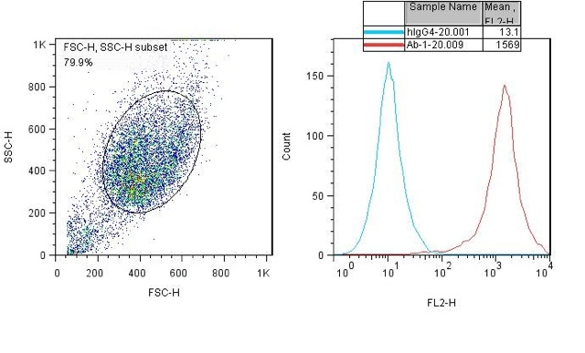 PD-1 Recombinant Cell Line Data