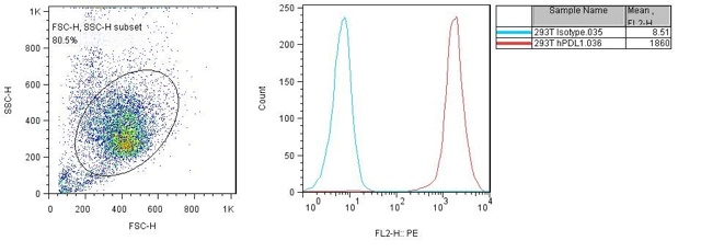 PD-L1 Recombinant Cell Line Data