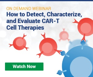 How to Detect, Characterize, and Evaluate CAR-T Cell Therapies
