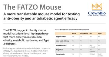 thumb-fatzo-mouse