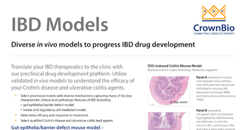 thumb-qf-inflammation-ibd-models